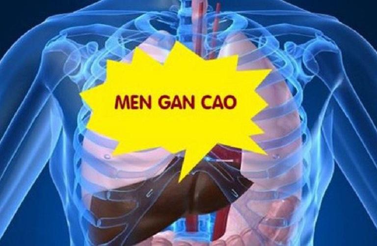 tang-men-gan-cao-co-nguy-hiem-khong-01